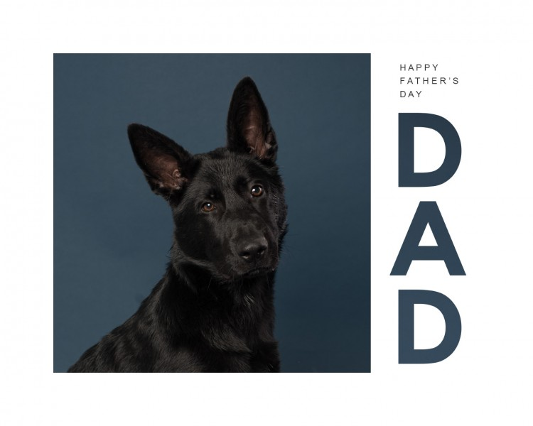 kingsley-allpaws-fathersday2020